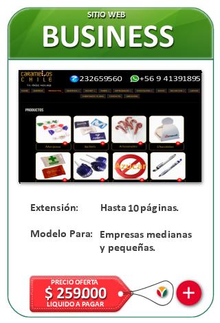 Páginas Web para Empresas Busines - Sitio Web de Negocios NIcosoft.net en Chile