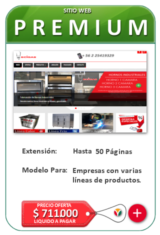 Sitio Web Premium - Páginas Web para Empresas con líneas de productos. Diseño web corporativo, muy optimizado SEO. Nicosoft.net, Chile