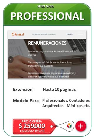 Páginas Web Profesionales - Sitio web corporativo- Diseño Web Corporativo Nicosoft en Chile