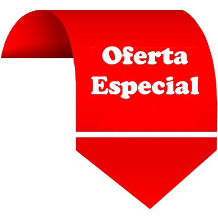 Oferta especial de Páginas Web con Diseño Web Corporativo en Chile